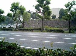 Image014_11